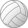 volleyball1_120